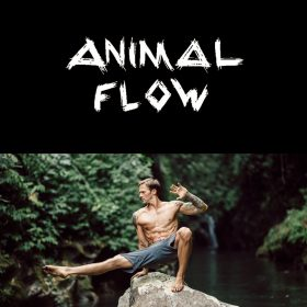 Animal Flow Workshop Germany / Deutschland
